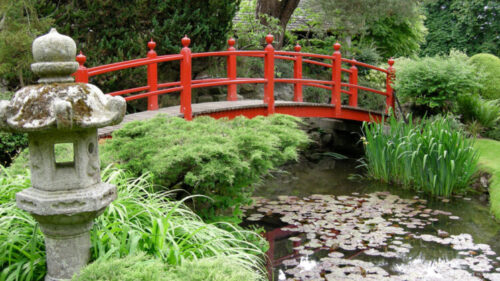 Kildare, National Stud and Japanese Gardens - Premium Day Tour from Dublin