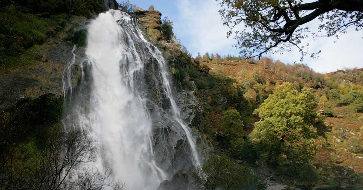 Powerscourt Waterfall - Premium Day Tour from Dublin