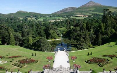 Some of the Best Gardens in Wicklow