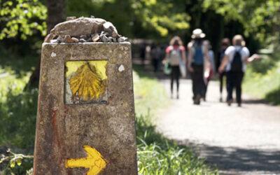 Guía básica y rutas principales del Camino de Santiago