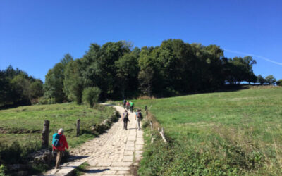 Walk the Camino the Santiago in Xacobeo Holy year