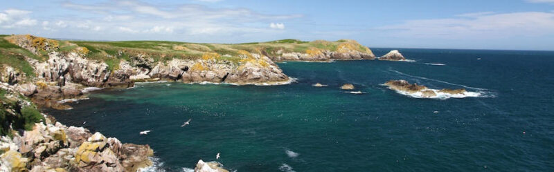 The Saltee Islands